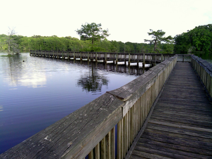 11) Chicot State Park