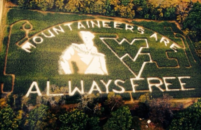 9. Cornfields turn into corn mazes.