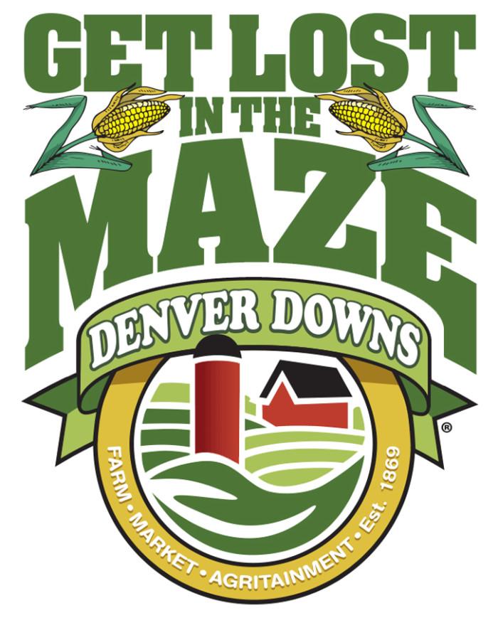 2. Denver Downs
