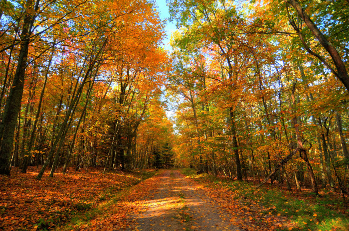 12. This shot with all the colors of fall in West Virginia.