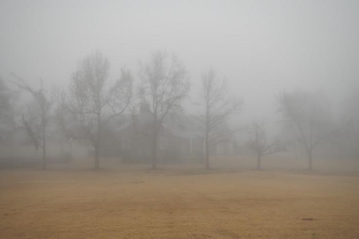 14. Foggy Morning in Batesville