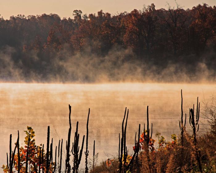 4. Misty Lake Fayetteville
