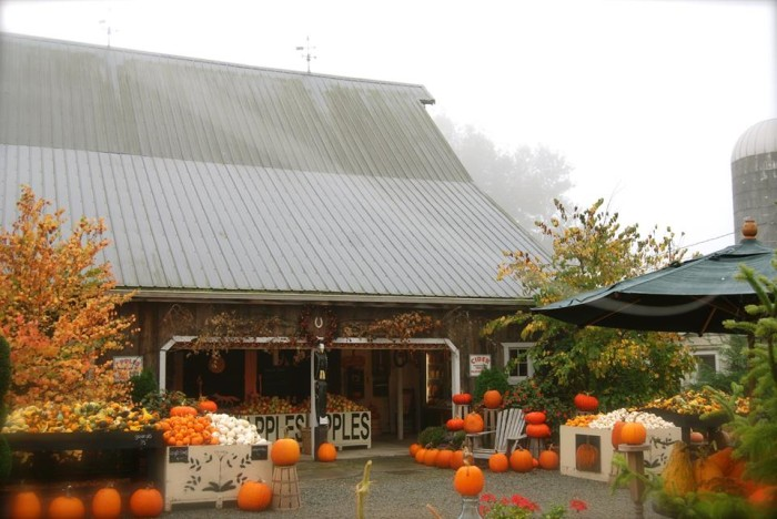 9. Gordon Skagit Farms, Mount Vernon