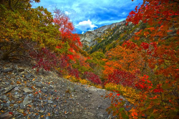 18) Grove Creek Canyon