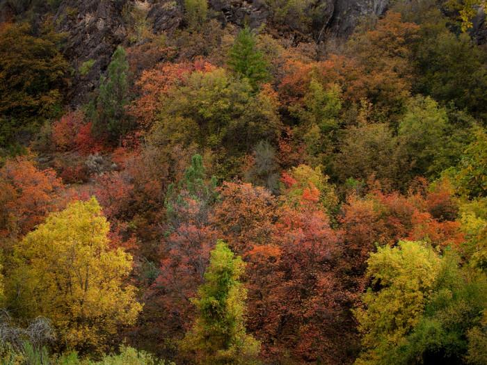 16) Hyrum Canyon
