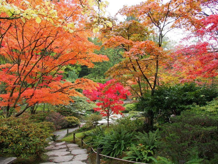 7. Explore the Japanese Garden in Seattle