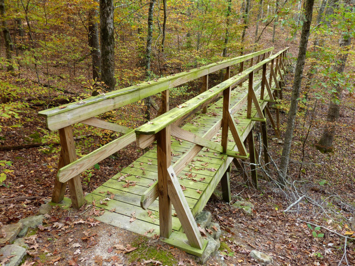 3. Take a day hike on the Caddo Bend Trail at Lake Ouachita State Park.