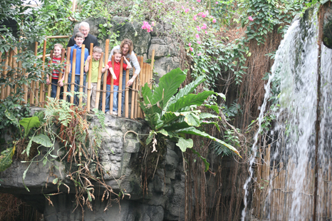 Head to the jungle. The Lied Rainforest at Omaha's zoo is enclosed, so you don't have to worry about the outside weather. Same goes for the rest of the indoor exhibits - just be sure to take an umbrella for walking between the buildings.