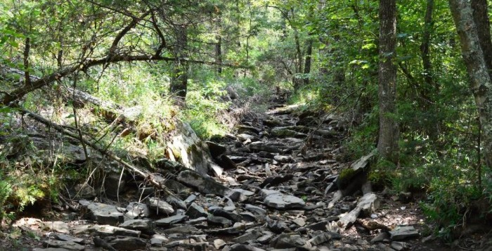 13. Take a hike on the Cove Lake Trail at Mount Magazine State Park.