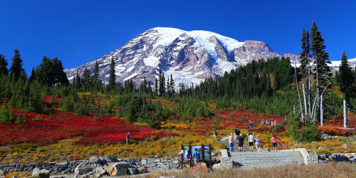 1. Paradise, Mount Rainier National Park