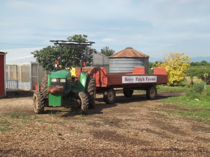 1. Berry Patch Farms (Brighton)