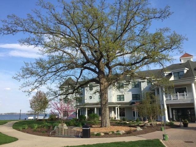 oakwood-resort (1)