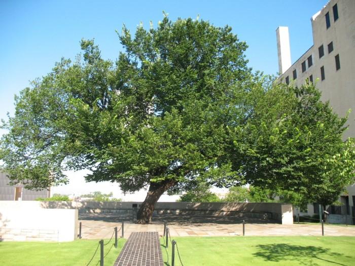 1. Oklahoma City National Memorial & Museum: Oklahoma City