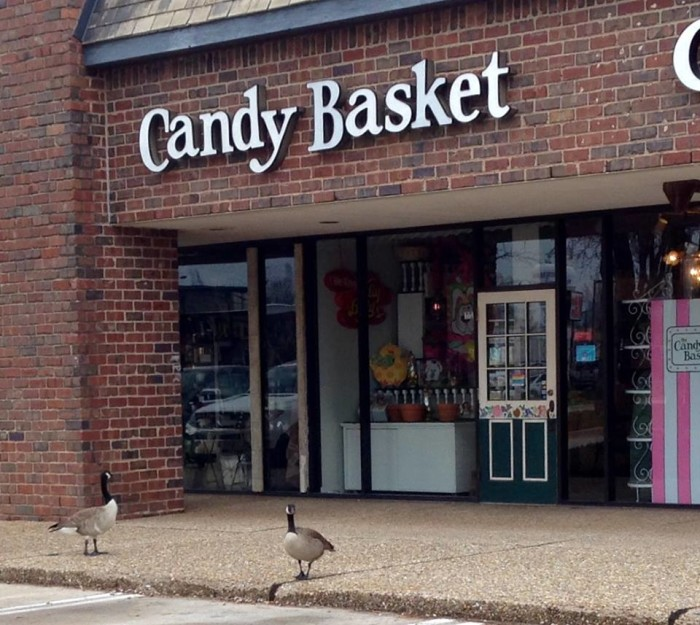 7. The Candy Basket: Norman