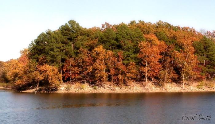 3. Honey Creek State Park: Grove