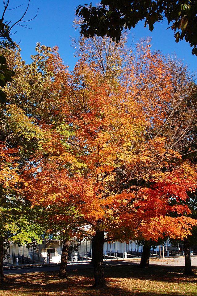 5. Lake Thunderbird State Park: Norman