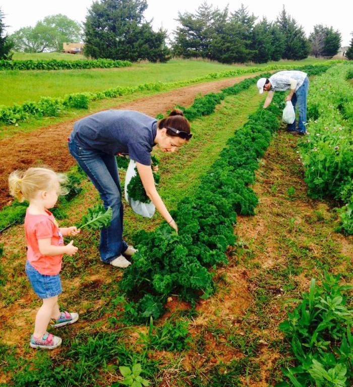 5. Vision Farms: Guthrie