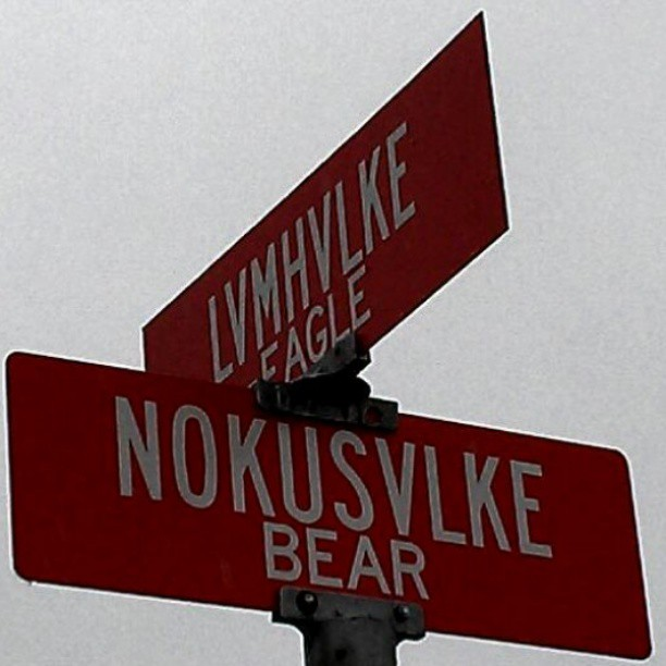 5. LVMHVLKE Eagle and NOKUSVLKE Bear