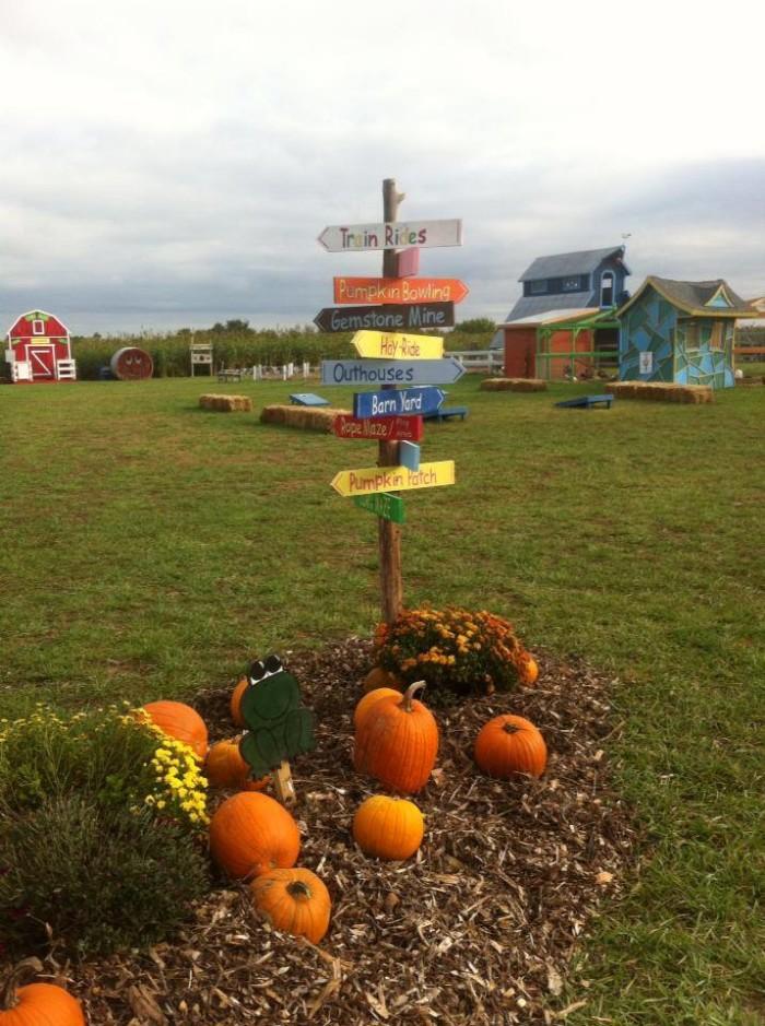 15. Annabelle's Fun Farm: Welch
