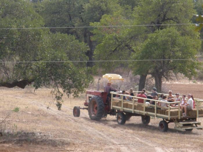 10. Happy Days Farms: Terral