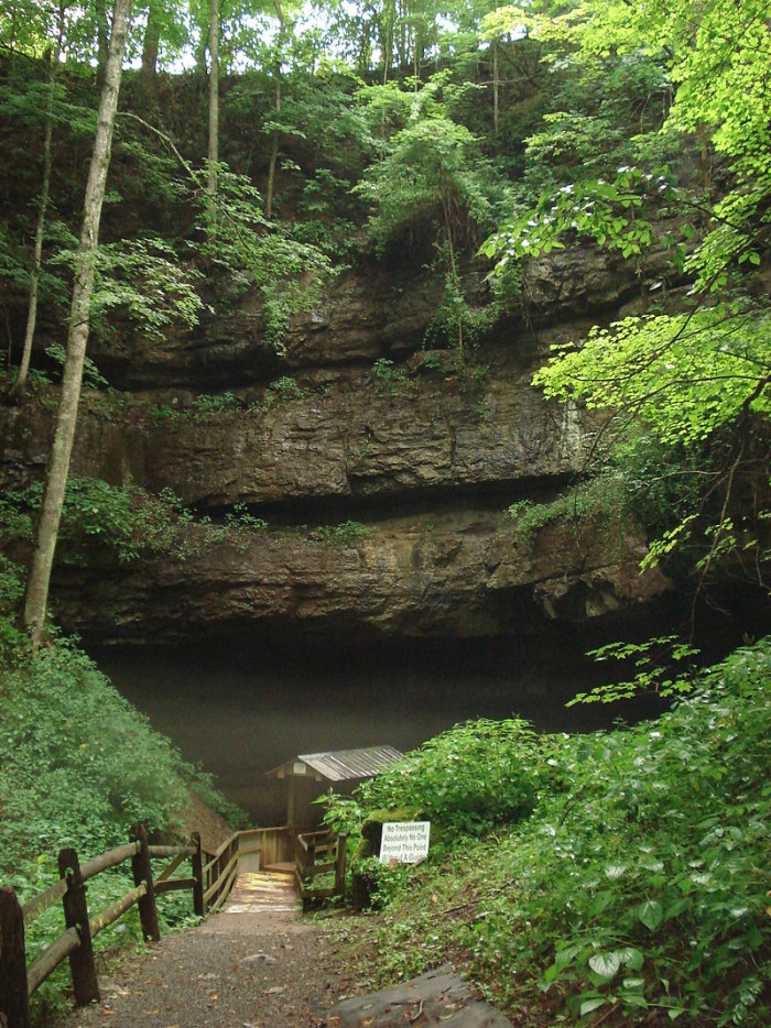 8. Organ Cave in Greenbrier County.