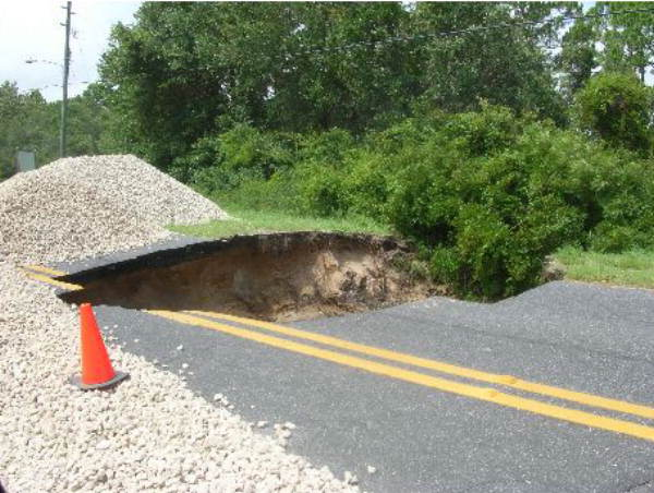 6. Alligator Road, Franklin County, 2005
