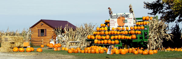 10. Pumpkin Patches start opening to the public for the season!