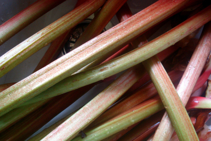 7. Raw rhubarb and sugar.