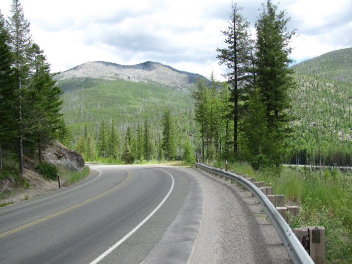 8. Sherman Pass Scenic Byway