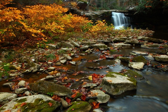3. This scene from a beautiful West Virginia fall.