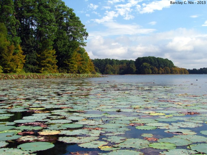 10) South Toledo Bend Reservoir