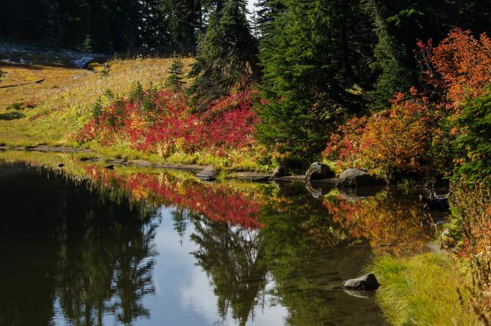 7. Tipsoo Lake, Naches Peak Loop