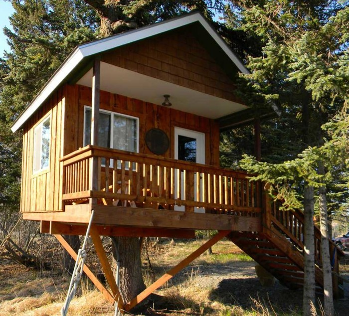 3) The Treehouse Cabin
