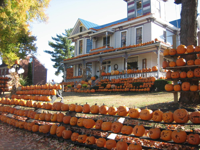 11. Trips to the Pumpkin House!