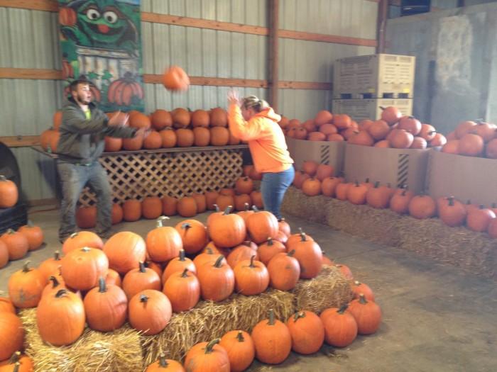 Renicks pumpkin patch hours omaha