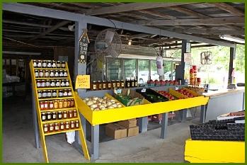 6. Rogers Farm, Gainesville