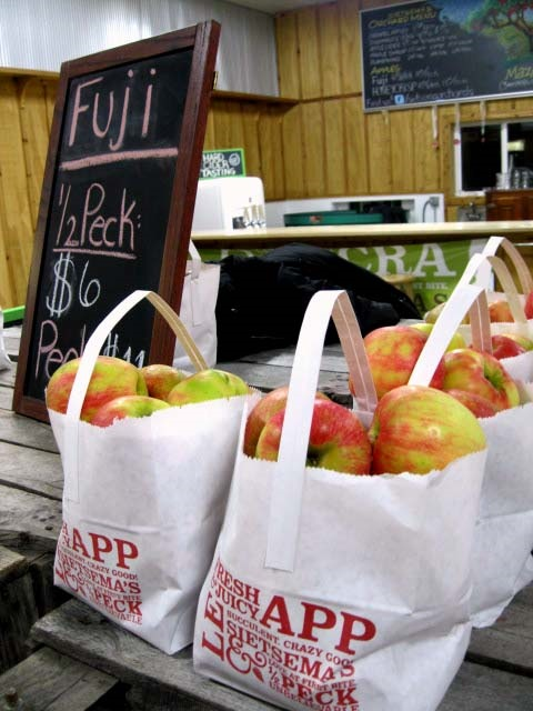 7. People are gearing up for apple picking