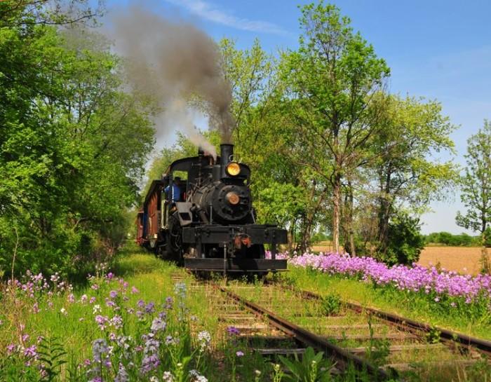 4. Silver Creek and Stephenson Railroad (Freeport)