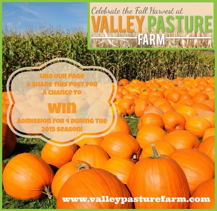 9. Valley Pasture Farm