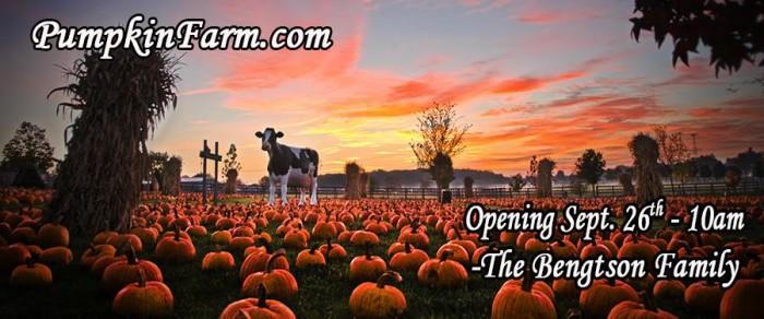 1. Bengston's Pumpkin Farm