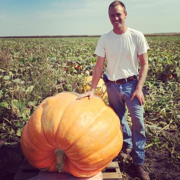 7. Heap's Giant Pumpkin Farm
