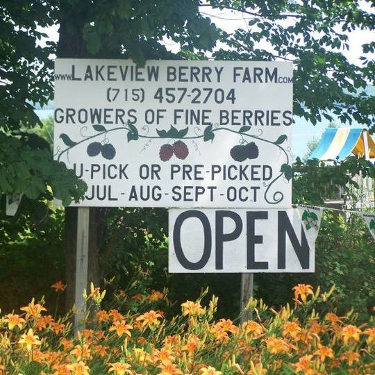 10. Lakeview Berry Farm