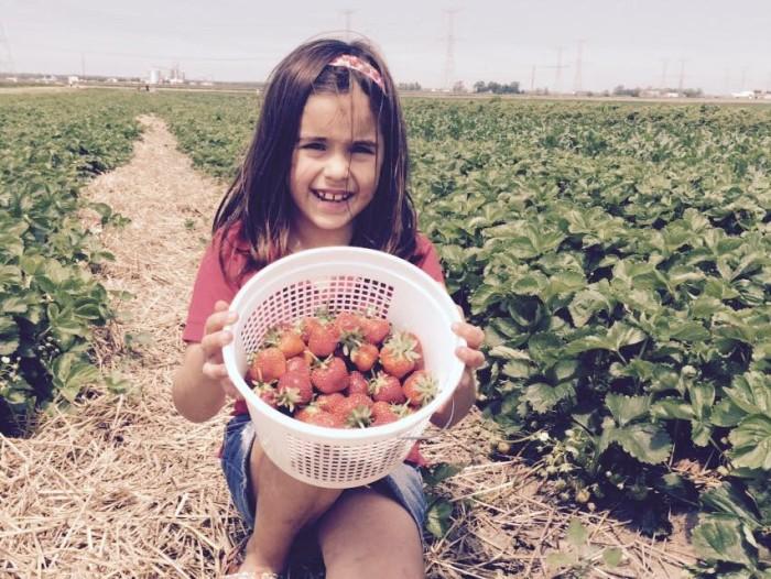 10. Olive Berry Acres
