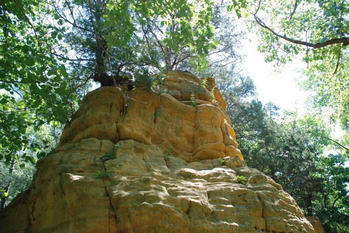 5. Gone to Starved Rock...