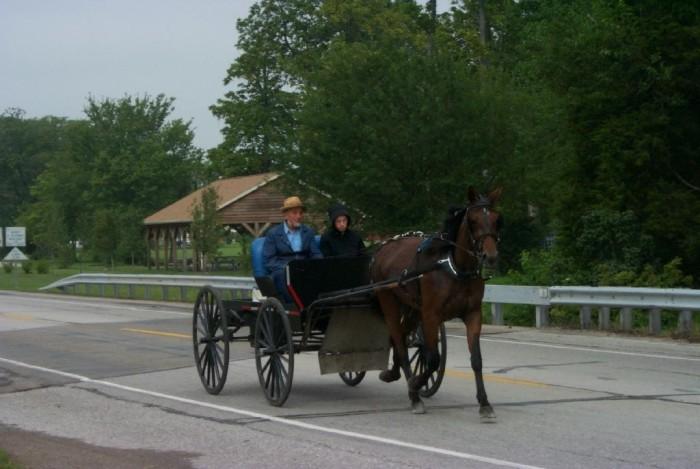 9. Taken a road trip to Southern Illinois