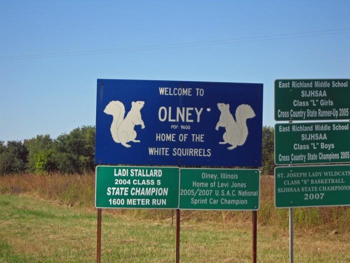 7. Olney