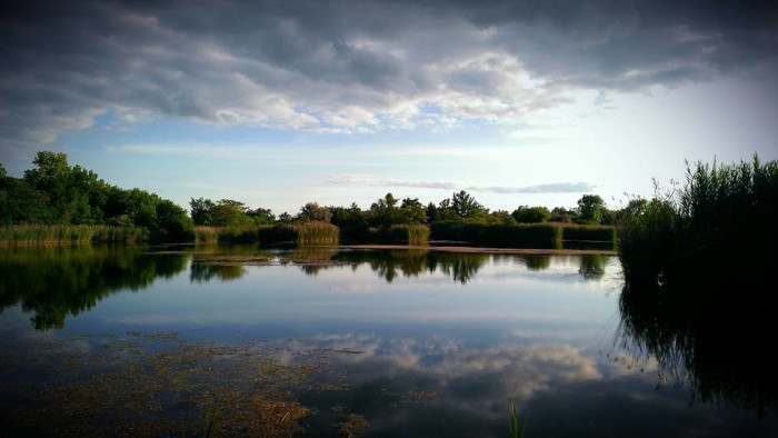 15. Bill took this shot of mirrored water in Essex, Illinois.