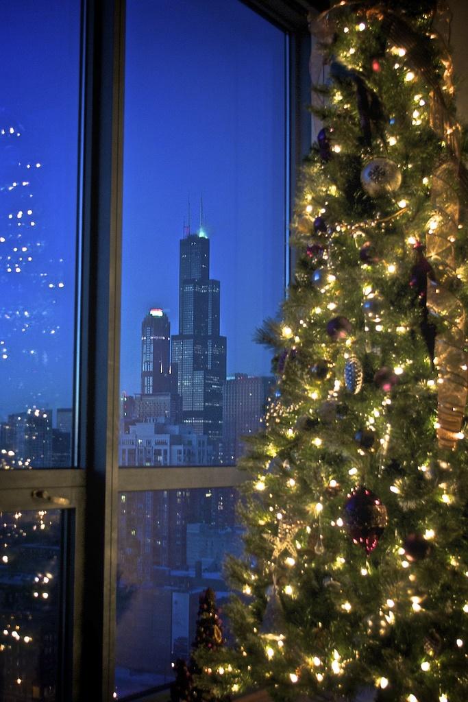1. Chicago through the glass