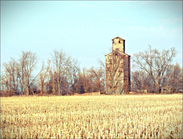 12. Old grain elevator, Empire