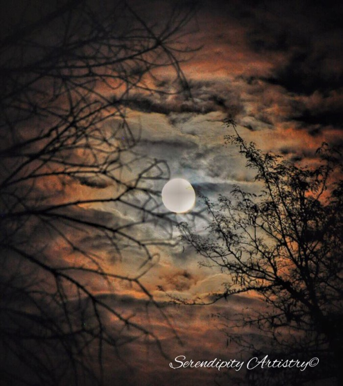 1.  Angie Doty of Serendipity Artistry in Irondale caught this shot of the blood moon on September 27.